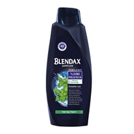 Picture of BLENDAX 600 ML ŞAMP.ERKEK MENTOLLU