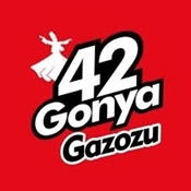 Picture for manufacturer 42Gonya
